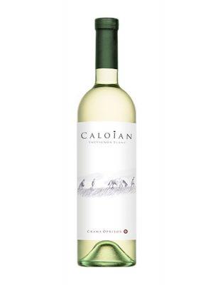 caloian-sauvignon-blanc
