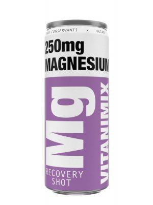 VITANIMIX Mg RECOVERY SHOT MAGNESIUM 6 BUCATI X 0.25L